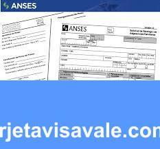 Conoce como completar el Formulario 6.258 de Información Sumaria  ANSES